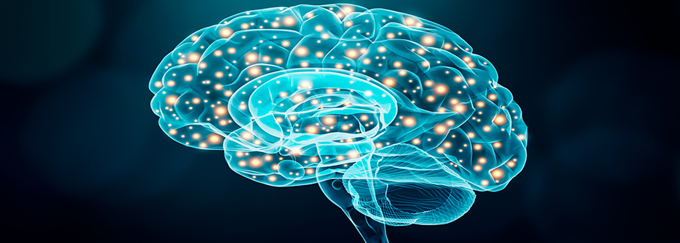 How Does Ritalin Work in the Brain?